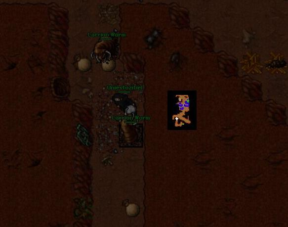Droga do dead archera